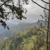 TOWARDS THE MALAYSIA NARRATIVE