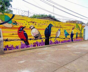 Colectivo Culturas Vivas, Plumas en cantos / Feathers in song, Tegucigalpa, Honduras, 2020