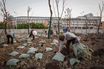 Workers fertilize soil and plant trees at the former site of Jiangsu Changlong Chemicals Co. Ltd., Jiangsu Huada Chemical Group Co. Ltd., and Changzhou Chang-Yu Chemical Co. Ltd., in Changzhou, Jiangsu province, April 19, 2016. Zhou Pinglang for Sixth Tone