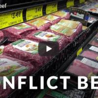 Conflict Beef