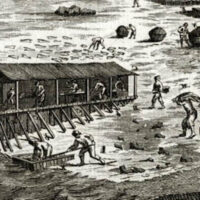 Processing cod in a 16th Century Newfoundland 'Fishing Room'