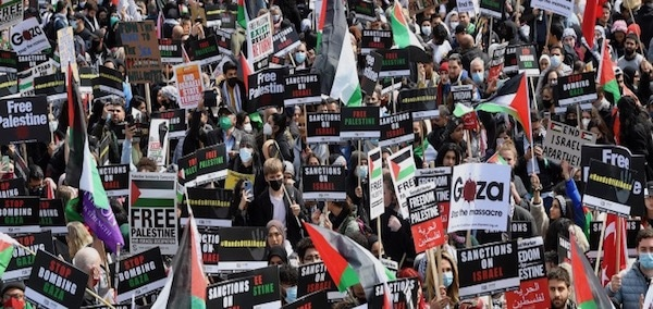 Norman Finkelstein: Truth and Justice Are the Ultimate Test, Not International NGOs
