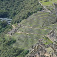   Perú   MR Online