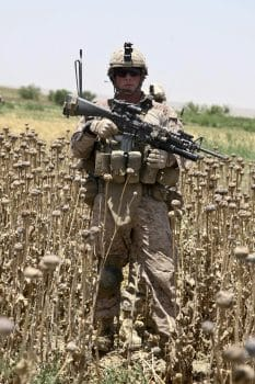 | A US Marine stands in a poppy field during a foot patrol at Sangin Afghanistan Photo | DVIDS | MR Online