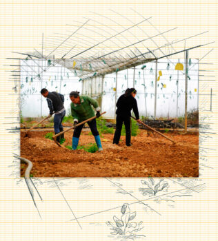 | Peasant workers till the land in an organic bamboo fungus company | MR Online