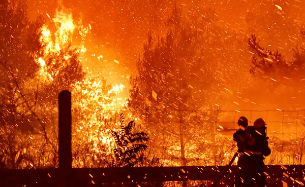   Firefighters try to put out a fire as flames spread over a highway on August 5 2021 in northern Athens Greece   MR Online