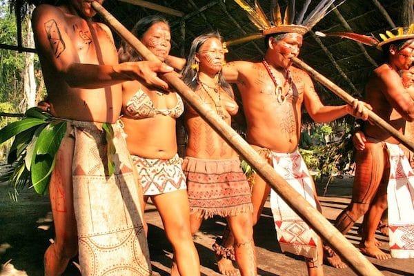 MR Online | Tukanos from Amazon rainforest | MR Online