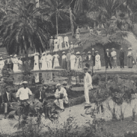 A United Fruit Company promotional for a plantation in Jamaica. Credit: Boston Webster