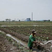 A farmer is watering crops in the vicinity of the Indramayu 1 power plant in West Java, financed by a consortium of Chinese and Indonesian banks. In recent years, local pollution and climate concerns have driven up Chinese overseas investment in renewables. (Image: Adi Renaldi / China Dialogue)