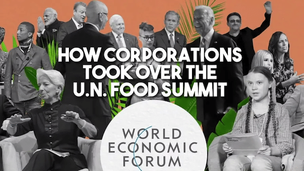 | How big corporations and Bill Gates took over the UN food Summit | MR Online