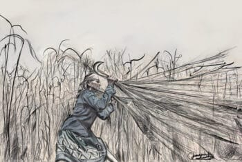 | A woman working in the korai fields where women often work from a young age to earn a living Illustration Junaina Muhammed India Young Socialist Artists Reference photo M Palani Kumar Peoples Archive of Rural India PARI Tamil Nadu April 2021 | MR Online