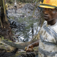 The photo shows an oil spill from an abandoned Shell Petroleum Development Company in Olobiri, Niger Delta (Ed Kashi, 2004). The image is taken from the cover of Wengraf's book.
